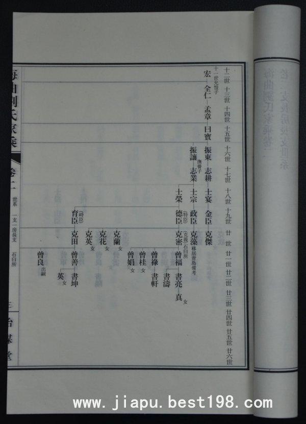 家谱格式怎样写的图片
